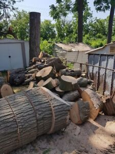 Free oak wood only pick up today or tomorrow