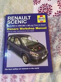 Haynes Renault scenic 53 to 06