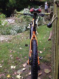 Genisis latitude mountain bike