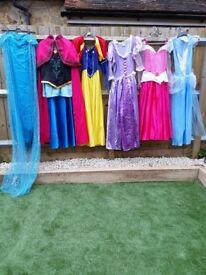 Disney Princess lookalike fancy dress costumes