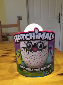 Hatchimals Pengualas Teal Egg - BRAND NEW
