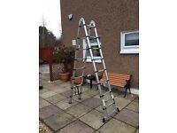 Telescopic Combination Ladder (5 metres)