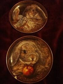 Bunny rabbit tales collectable plates