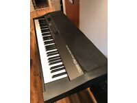Roland RD-250s Digital Stage Piano with Weighted Keys