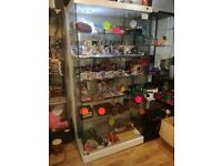 LARGE RETAIL GLASS DISPLAY CABINET