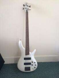 Ibanez SDGR Bass Guitar (plus amp if required)