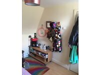 Bright and cosy double bedroom to rent in a 3 bedroom flat