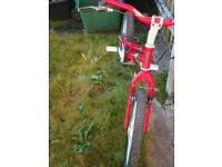 """Onza bird trials bike 20"""""""