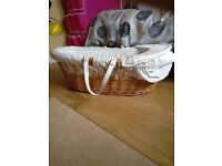 Wicker moses basket with extras