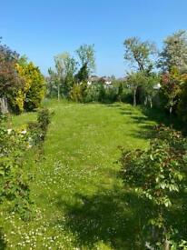 Gardening help needed (lawn mowing & weeding)