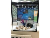 Glass Aquarium Fish Tank
