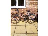 Ladies/gents matching bicycles