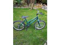 Childs Emmelle mountain bike, age groups 7 to 9