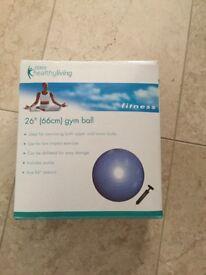 66cm Gym and Yoga Ball