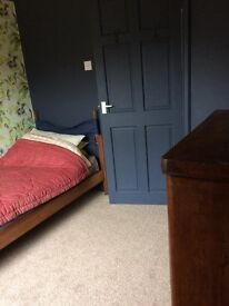 Short term room for lodger situated between both Brighton hospitals.