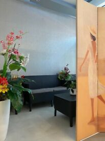 7 multinational (Moroccan,English,Polish, Japan,…)therapists offer great massage