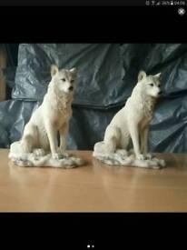 Wihte winter wolf's