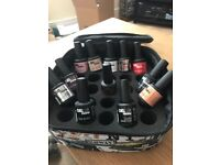 12 Bottles of Gellux and Carry Case