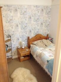 Single room to rent in Bury St Edmunds