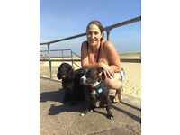 Petbuddies, Dog walking, petsitting in TW area. Based in Isleworth/Twickenham area West London