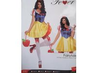 fairytale costume by Fever new -only tried-on
