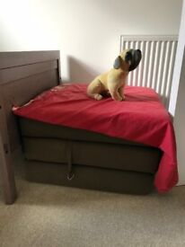 Fold-able Guest bed must go.
