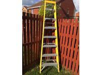 Fibre glass ladder