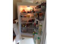 Groovy Fridge Freezer for sale