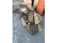 Rocks rockery