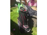 pinseeker golf clubs An bag