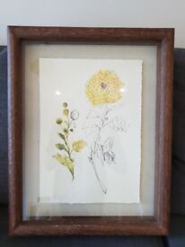 Anthropologie Print and Frame