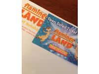 Flamingo Land 2 tickets - £25 for pair