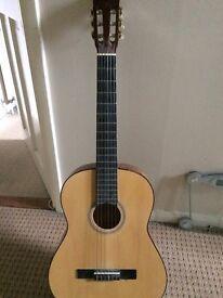 Elevation Acoustic Guitar Nylon Strings