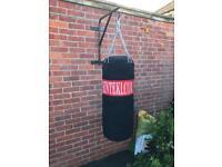 Punch/kick bag