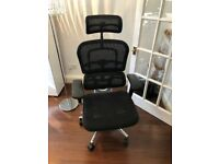 Ergohuman Black Mesh Office Chair with Headrest.