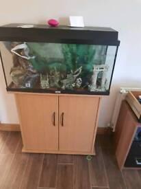 Jewel fish tank and cupboard