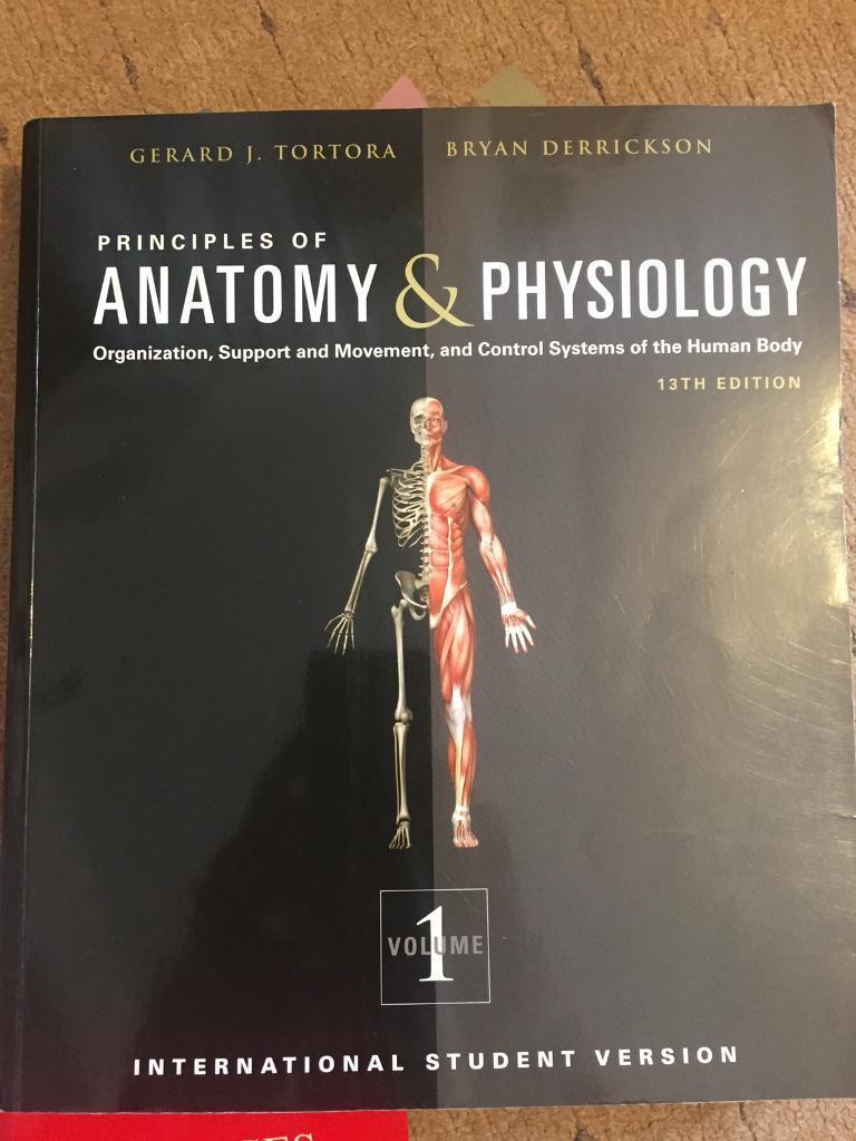 Fantastic Human Anatomy And Physiology Tortora 13th Edition Frieze ...