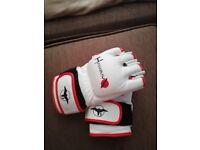 Hayabus gloves