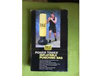 Everlast inflatable punch bag
