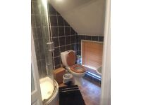 Double ensuite room to let in Putney