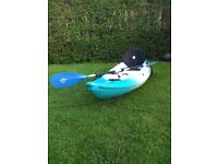 Perception kayak for Sale in Scotland   Gumtree