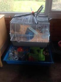 Hampster/ guinea pig cages x2