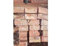 Free bricks. Whole bricks for reuse or paths
