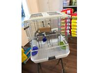 4 cages for sale for budgies or small birds