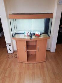 Juwel vision 180 litre fish tank and stand full tropical setup