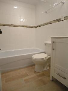 Beautiful studio in downtown highrise, spacious and clean