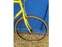 Giant Paletoon.. Single speed, Fully serviced is given, Lightweight super fast