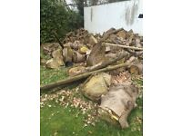Free logs, firewood, wood - please read