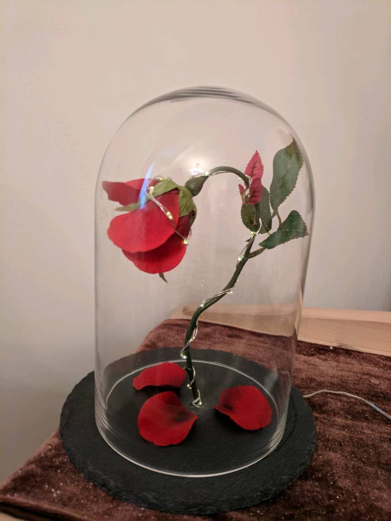 Beauty and the beast Rose with wrap around battery lights