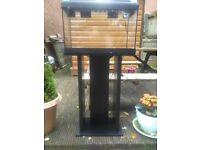 For sale fish tank stand,lid and light
